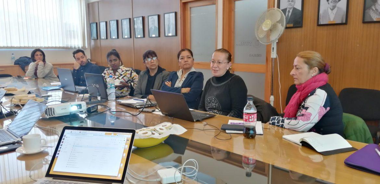 Especialistas de España, México y Chile se reúnen en la PUCV en torno a la Red Científica Interdisciplinaria en Discapacidad Intelectual y/o del Desarrollo
